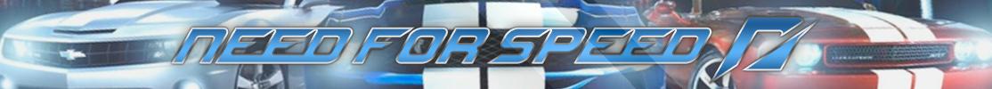 banner-nfs